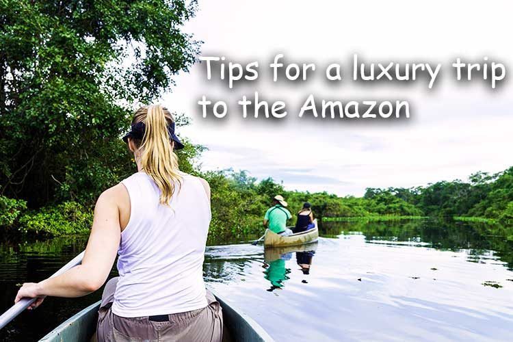 5 Tips for Traveling the Amazon in Comfort