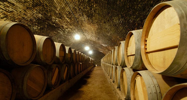 5 Uniquely South American Wine Varietals You Should Know