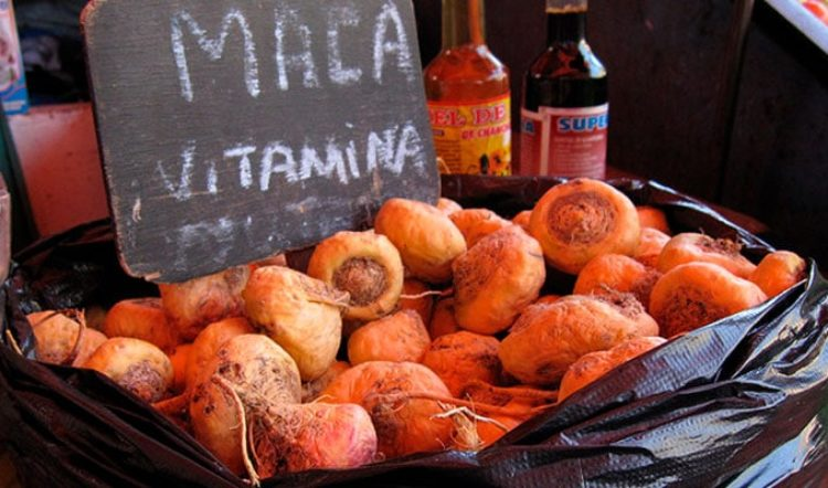 Peruvian Superfoods and How To Enjoy Them on Your Peru Trip