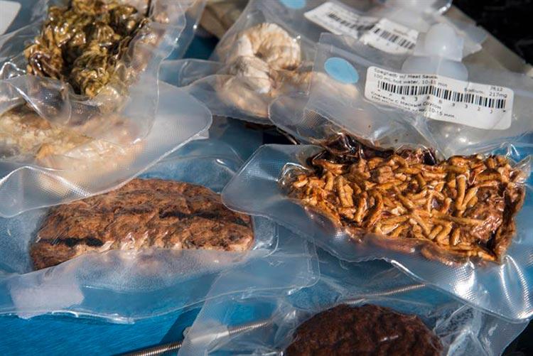 incas food preservation