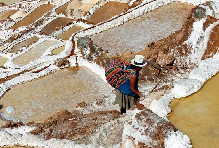 Inca's Food Preservation – A Gift to the World – Part 4