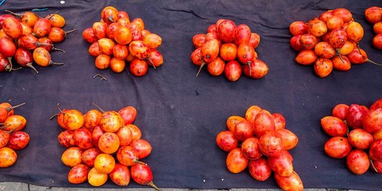 tomato peru