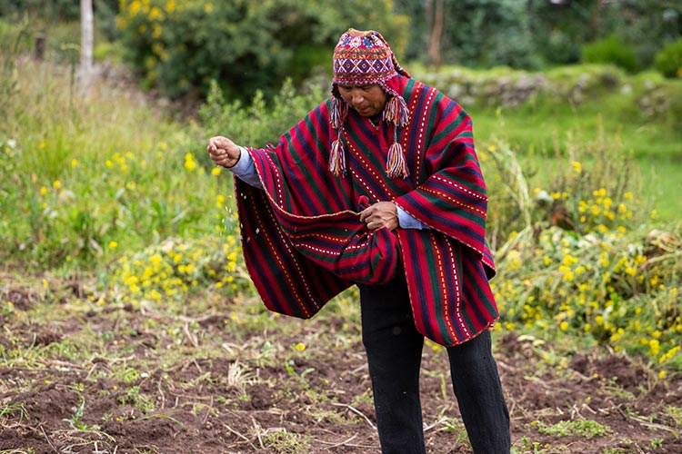 Peruvian clothing of the Andes ponchos
