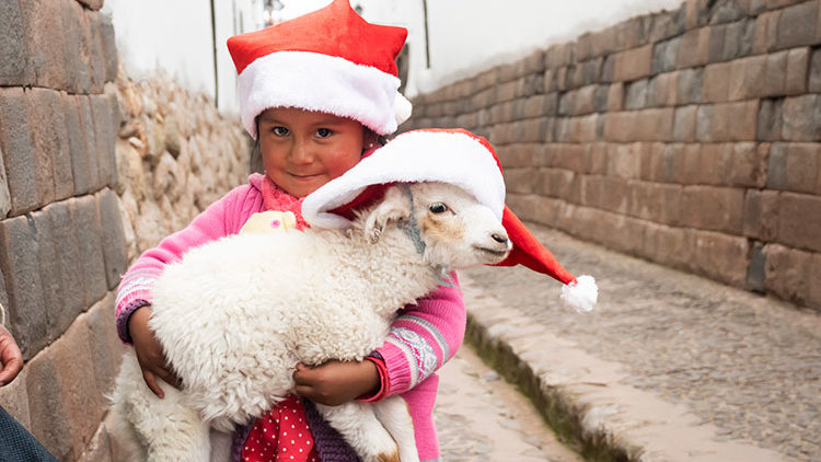 Celebrate Christmas in South America – Peru!!