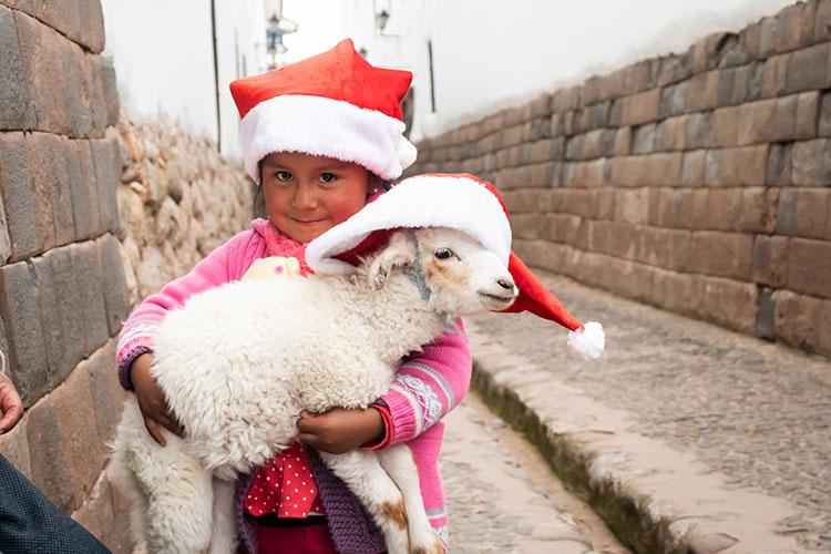 Celebrate Christmas in South America – Peru!!