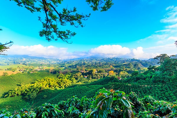 private travel colombia honeymoon