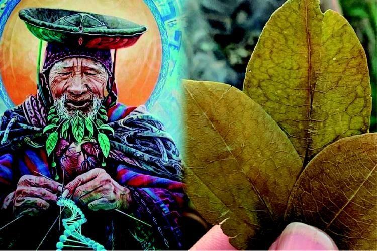 Mystical Medicine and Healers in Peru