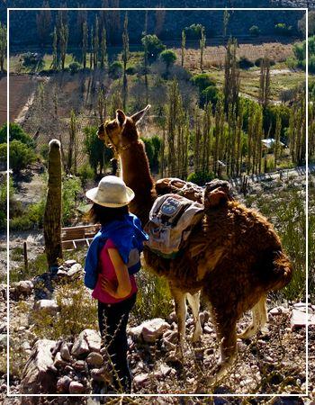 Argentina northern travel