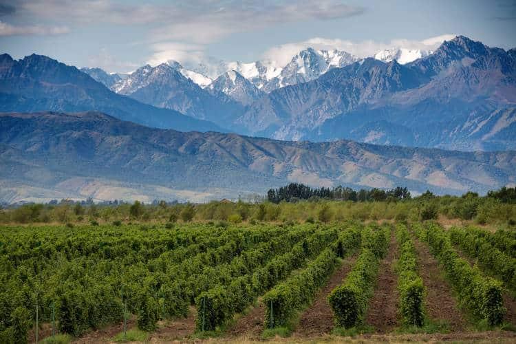 Mendoza Argentina Travel