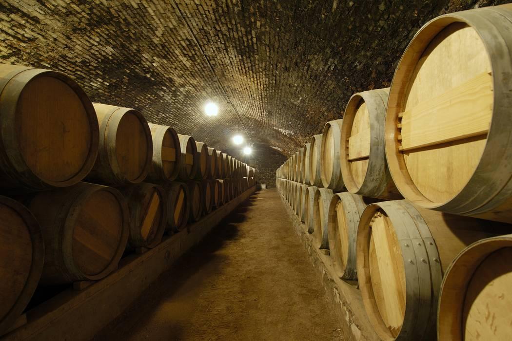 wine country concha toro
