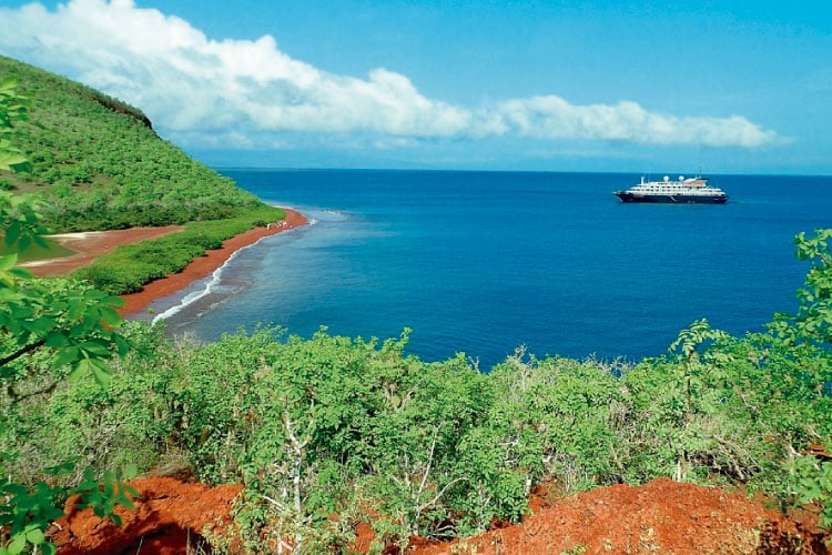 To Cruise or Island – Hop That is the Question Touring The Galapagos