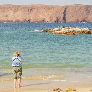 peru destinations paracas