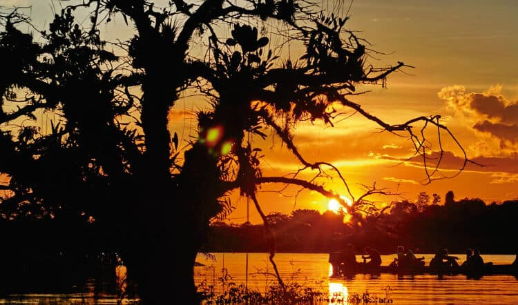 6 Most Exciting South American Cities in the Amazon Rainforest