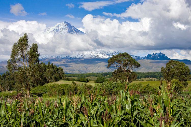 Avenue volcanoes Ecuador
