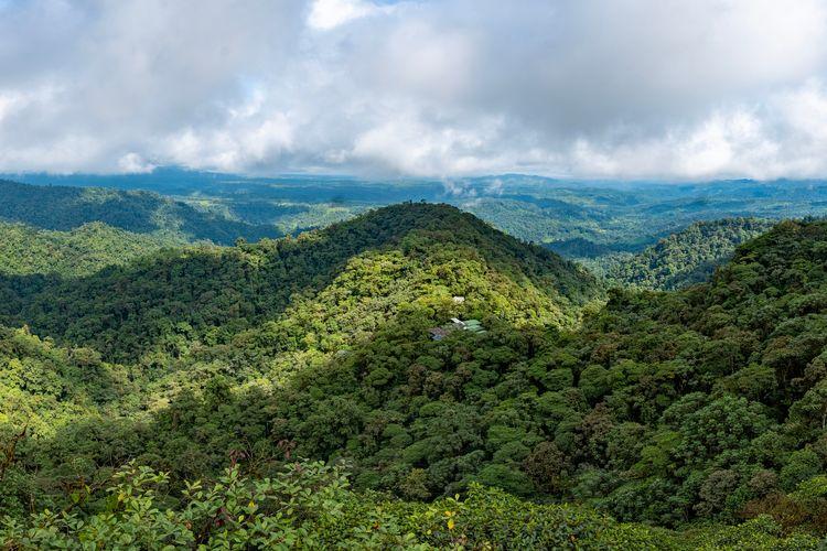 Mashpi Ecuador Travel