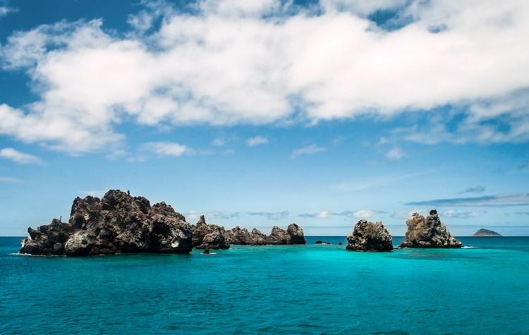 Galapagos honeymoon